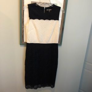 Karl Lagerfeld Paris Navy and White Lace Dress